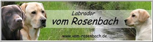 Banner Vom Rosenbach